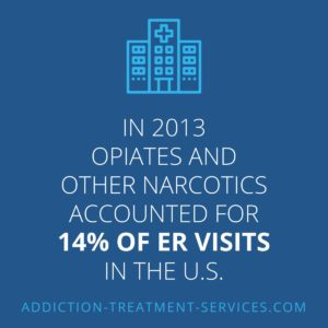 Percentage of ER Visits From Opiates and Narcotics in 2013