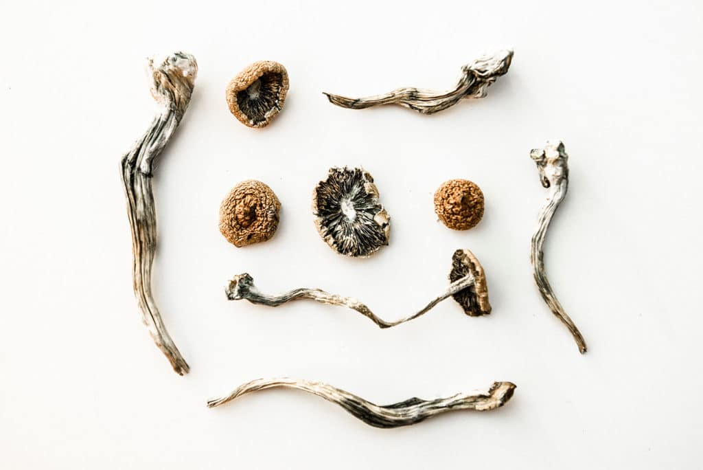 How Long Do Magic Mushrooms Stay In Your System?